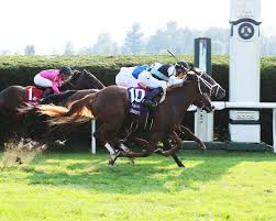 Breeders Cup Charts 2010 Breeders Cup Juvenile Turf Current Opry Give Pletcher Two