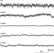 A Practical Technique For Electrophysiologically Recording