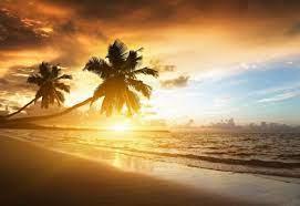 تعرف على سر جمال الشمس عند الغروب و الشروق؟ ربما تعجز الكلماتك عن وصف جمال  مشهد الشمس