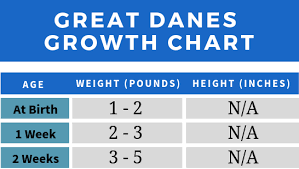 Height Predictor Based On Growth Chart A Typical Great Dane Growth Chart Great Dane K9