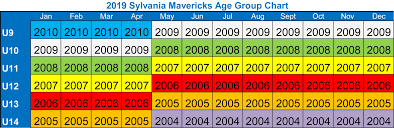 2019 Mavs Age Group Chart Youth Adult Recreation Programs