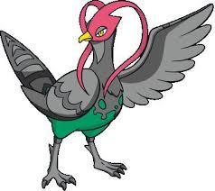 Pokemon Pidove Evolution Chart 88451 Echip