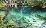 imagem de Nobres Mato Grosso n-7