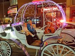Country Carriage Company – The only way to see Indianapolis