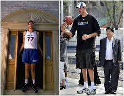 Celebrity Height Chart Tumblr Basketball Players Height Chart From Shortest To Tallest