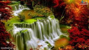 nature wallpaper with flowers image good morning photo house hd photo gallery s
