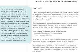 Argument And Persuasion Essay Examples Debate Essay Example Position Argument Essay Example