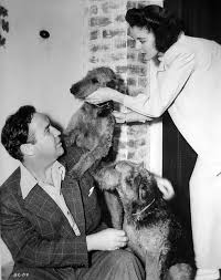 Kay Griffith, She was an American actress, known for Covered Wagon Days  (1940), Wife, Husband and Friend (1939) and … | Airedale dogs, I like dogs,  Airedale terrier