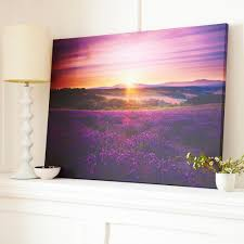 lavendar sunset by graham and brown