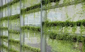 let s get vertical a primer on gardening