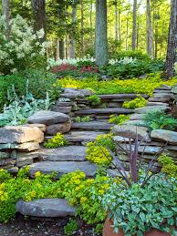 Small Picture Hillside Landscaping Ideas