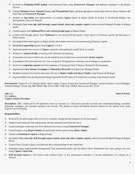 cognos report developer resume