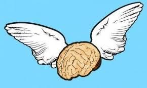 Картинки по запросу картинки мозг