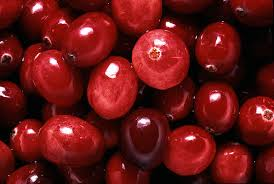 Image result for photos of cranberries
