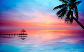 beautiful tropical sunset
