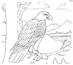 Bald Eagle Coloring Pages Printable Flying Bald Eagle Coloring Page