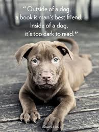 Image result for quotes dog