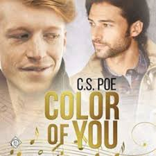 Audio Review: Color of You by C.S. Poe ~ Narrated by Greg Tremblay – The  Novel Approach Reviews