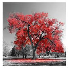 <b>Картина</b> на стекле Красное <b>дерево</b> 30х30 см купить недорого в ...