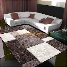 Woonkamers Luxe Salon Interieur Maison De Villa Moderne Wit