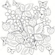 Kleurplaat Pagina Bloemen Champignons En Aardbeien In De