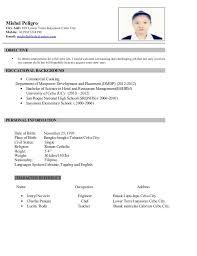 Example Ng Resume Examples Of Resumes