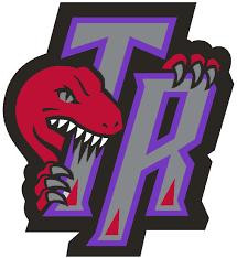 Image result for toronto raptors logo