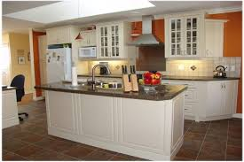 C Cabinets For Less Thomasville Kitchen Best Rta  Online Overstock Assembled