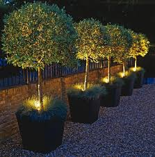 flower bed lighting. best 25 garden lighting ideas on pinterest stage decorations and table flower bed