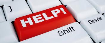 essay help   reportwebfccom essay help