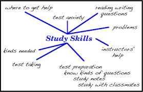 study skills essay dll study skills series essay writing
