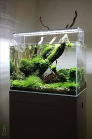Nano Aquarium Design Planted Aquarium Nano Tank Aquascape By Lauris Karpovs