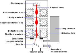 Scanning Electron Microscopy Nanoscience Instruments