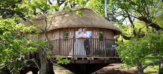 luxurious tree house hotel. The Treehouse At Deer Park Country House Hotel Luxurious Tree U