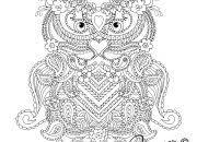Mandala Kleurplaten Uilen 78 Mooi Mandala Uil Kleurplaat Mandala