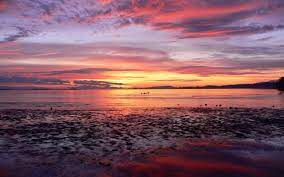 2560x1600 Beautiful sunset desktop PC ...