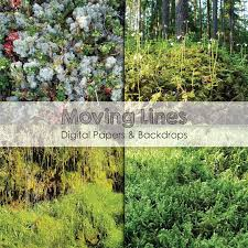 outdoor woods backgrounds. Moss Photos, 10 Digital Papers, Forest Photography, Printable Nature Green Outdoor Woods Texture Backgrounds From MovingLines On Etsy Studio U