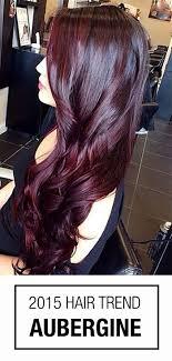 Burgundy Hair Color Aubergine Is A