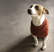 Dog Sweater Knitting Pattern In The Round