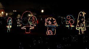 holiday spirit at the reflections of season christmas light display lighting baton rouge n20