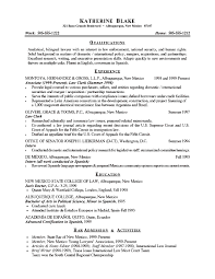 resume ideas for objective