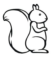 Squirrel Pictures To Color Click The Squirrel Coloring Pages Red
