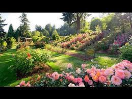 gardening ideas and garden landscaping