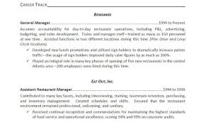 Resume Beautiful Professional Resume Service Resume Best