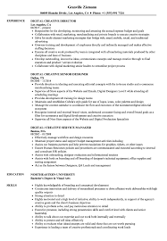 Director Resume Sample Creative Director Resume Sample Fungramco 90