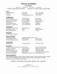 Film Resume Template Beautiful Short Resume Templates Matchboard