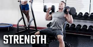 Northern Lights Fitness Canada Strength Northern Lights Fitness Equipment