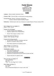 Concise Cv Template (A4)