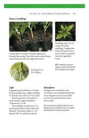 Grow Light Schedule