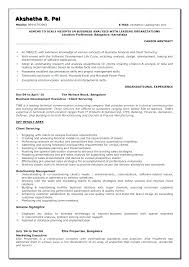 System Analyst Sample Resume Unique Resume Objective Statement Examples Business Analyst With Resume